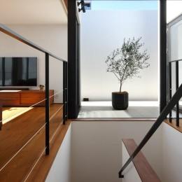 Double Wall House / ダブルウォールハウス (階段)
