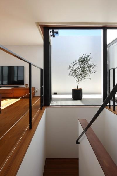 階段 (Double Wall House / ダブルウォールハウス)