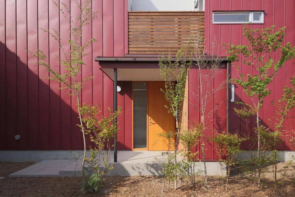 雑木林の庭を取り込む家・RED & GREEN HOUSE (外観3)