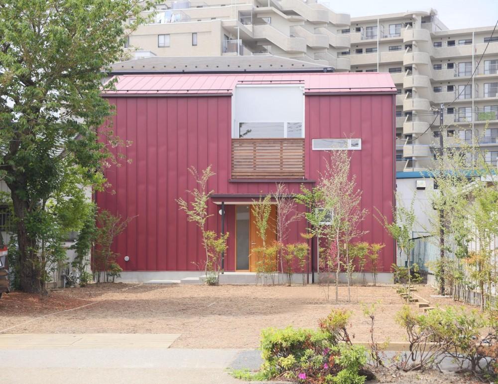 雑木林の庭を取り込む家・RED & GREEN HOUSE (外観1)