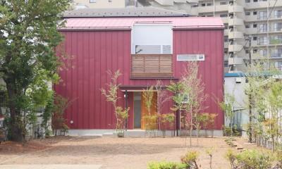 雑木林の庭を取り込む家・RED & GREEN HOUSE