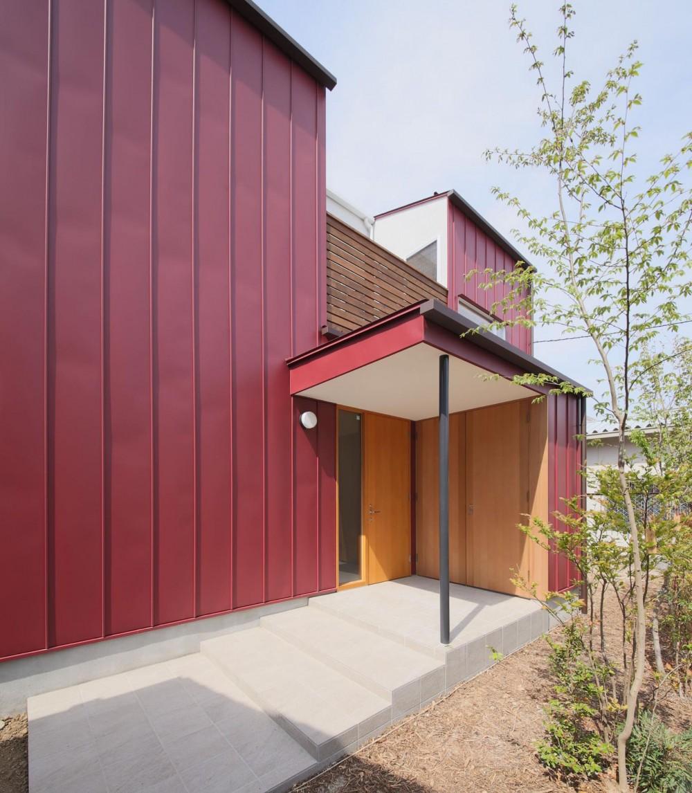 雑木林の庭を取り込む家・RED & GREEN HOUSE (外観2)