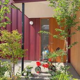 玄関ポーチ (雑木林の庭を取り込む家・RED & GREEN HOUSE)