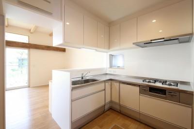キッチン (赤の家・RED HOUSE)