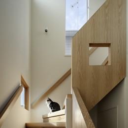 階段 (中野のSOHO / ツーバイフォー住宅のリノベーション)