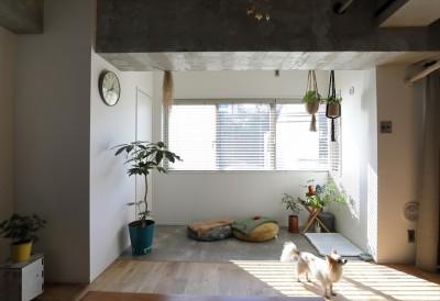 Life with My Home ー居心地のいい家が、生活の基盤ー (サンルーム)