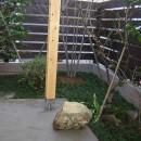 「潤い感のある緑」の成功例の写真 小さな庭