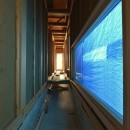 愛知の土壁[工事中]の写真 光と風の抜ける廊下