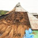 愛知の茅葺き再生[茅葺き]の写真 古茅も再利用しながら葺き直す