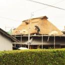 愛知の茅葺き再生[茅葺き]の写真 刈った茅は、ほうきで掃除