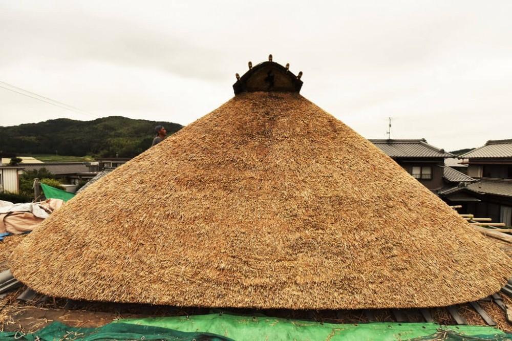 愛知の茅葺き再生[茅葺き] (野屋根)