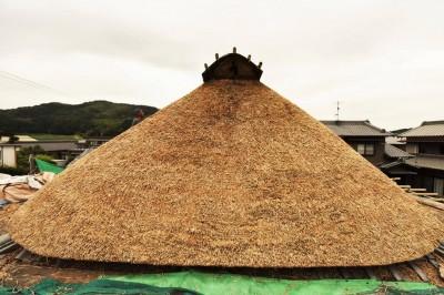野屋根 (愛知の茅葺き再生[茅葺き])