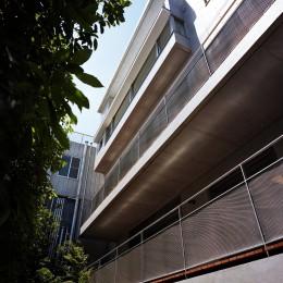 【フラッツS 】  都心の山岳都市住宅 (庭側外観)