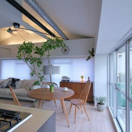 Green Apartment58