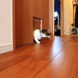 """""""小さな家族""""のためすべてのドアに専用口を設けた「優しい家」~K様邸~ (猫ちゃん入り口)"""