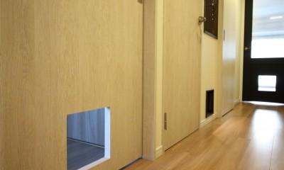 愛猫をいろんな角度で眺められる、遊びゴコロにあふれた家~T様邸~ (猫ちゃん用の入り口)