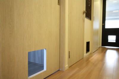 猫ちゃん用の入り口 (愛猫をいろんな角度で眺められる、遊びゴコロにあふれた家~T様邸~)