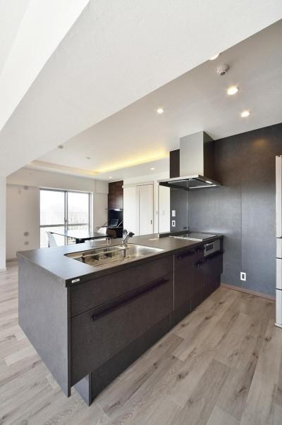 キッチン (少ないけれども十分な収納スペースを設けた快適な住居)