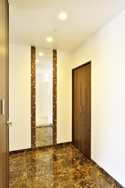 玄関 (少ないけれども十分な収納スペースを設けた快適な住居)