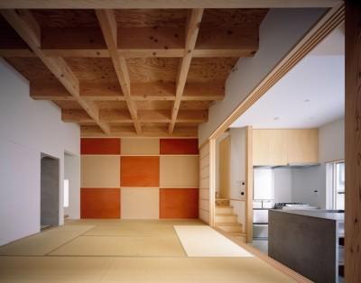 1階中央の8畳間 (椿庵 ― 茶室のある旗竿敷地の住宅 ―)