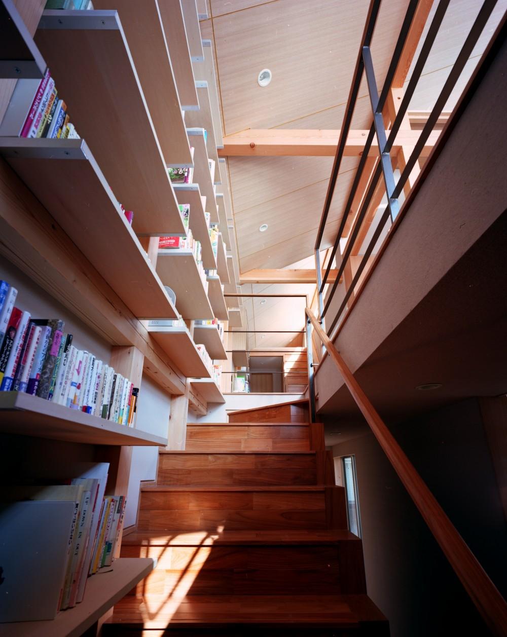 【本駒込の家】 短冊敷地を生かす中庭とデッキ (階段)