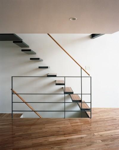階段 (【スキップテラスの家】  テラスの段差が生み出す、外部空間の変化)