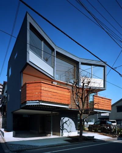 外観 (【柿の木を抱く家】   既存の木への愛着が生んだ家)