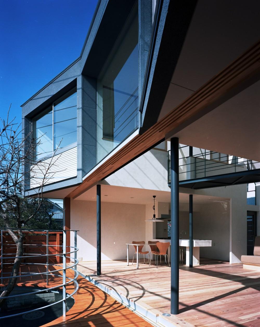 【柿の木を抱く家】   既存の木への愛着が生んだ家 (テラスからリビングダイニングを眺める)