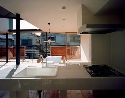 キッチンからリビングダイニングを眺める (【柿の木を抱く家】   既存の木への愛着が生んだ家)