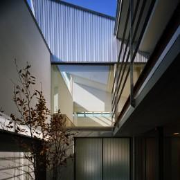 【宙空のコートハウス】 壁に囲まれたプライバシー完全な家 (中庭)