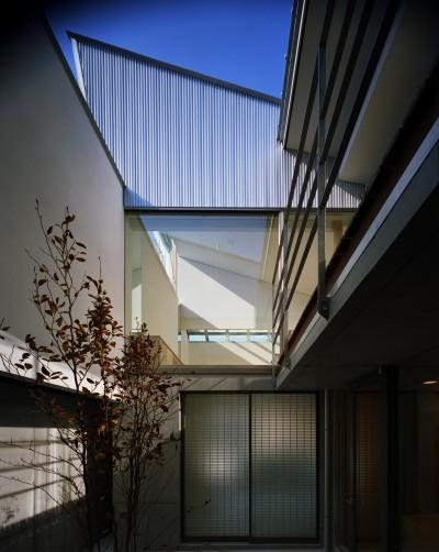 中庭 (【宙空のコートハウス】 壁に囲まれたプライバシー完全な家)