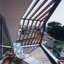 狭小傾斜変形地を生かした家の写真 ルーフバルコニー