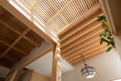 椿庵 ― 茶室のある旗竿敷地の住宅 ― (4種類のの天井で空間が変化する)