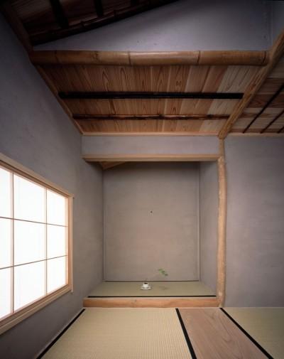椿の木の肌色に合わせた茶室 (椿庵 ― 茶室のある旗竿敷地の住宅 ―)