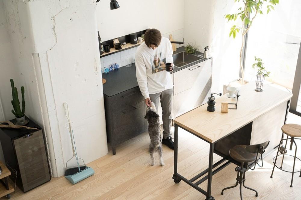 倉庫リノベーション_シンプル海外スタイル (キッチン)