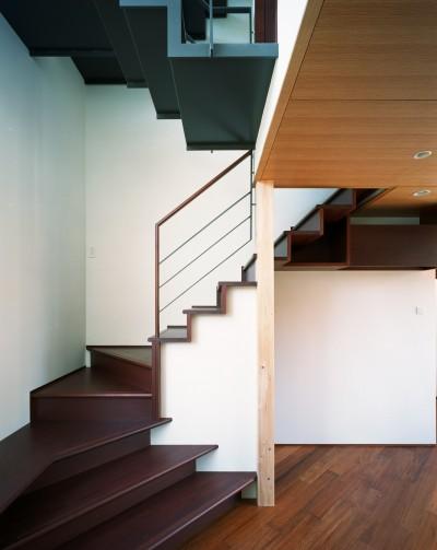 階段 (【ブーメラン・プランの家】 「へ」の字型のプランから広がる世界)