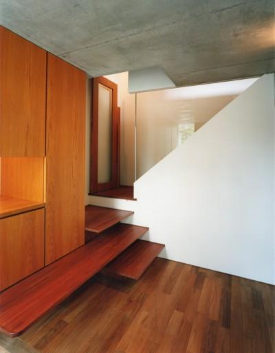 玄関・階段 (【自由が丘の家】  宙に浮いたテラスが特徴の住宅)