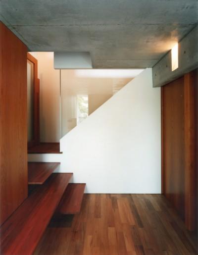 玄関 (【自由が丘の家】  宙に浮いたテラスが特徴の住宅)