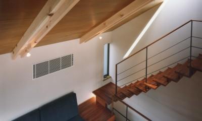 【自由が丘の家】  宙に浮いたテラスが特徴の住宅 (吹抜からリビングを眺める)