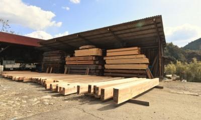 一宮の石場建て[工事中] (自然乾燥の材木)