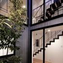阿佐ヶ谷ライト・エコハウスの写真 ライト・コート
