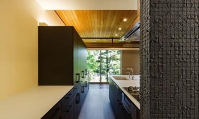 住道の家 (キッチンから庭を見る)