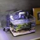 S邸-素材選びにこだわって、シンプルな家が個性的にの写真 リビングスペース