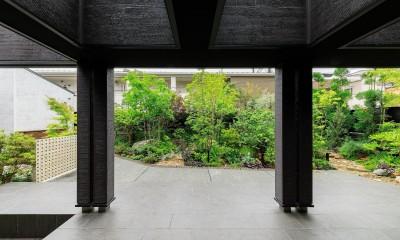 摂津の家 (タイルデッキテラスから庭を見る)