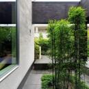 摂津の家の写真 クロチクの坪庭