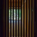 住道の家の写真 格子から覗く日本庭園