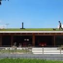 土間リビングで愛車と暮らす家 BEAT HOUSEの写真 芝屋根は楽しい!