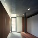 【大通りに建つ家】  騒音振動からすこやかな生活を守る砦の写真 玄関