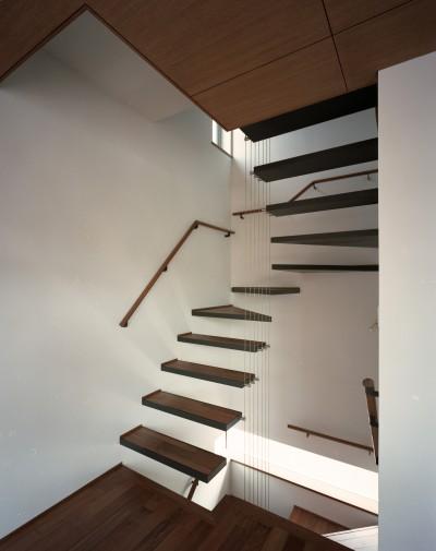 室内階段 (【大通りに建つ家】  騒音振動からすこやかな生活を守る砦)
