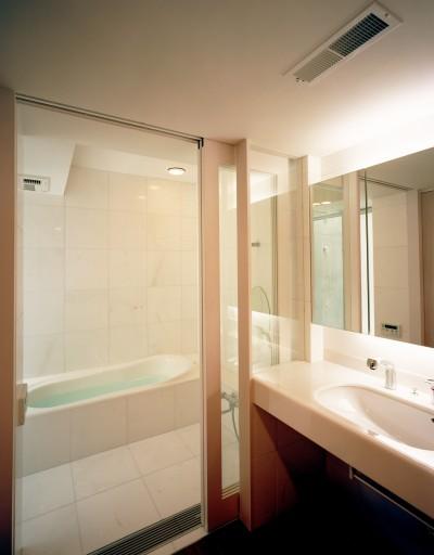 浴室・洗面 (【大通りに建つ家】  騒音振動からすこやかな生活を守る砦)